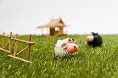 Moutons blancs dans le domaine Image libre de droits