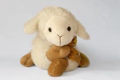 Moutons bourrés Photos stock