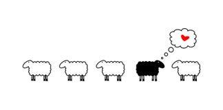 Moutons dans l'amour Photos stock