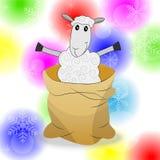Moutons dans un sac sur un fond lumineux de Noël Photos libres de droits