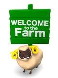 Moutons et enseigne sur le fond blanc Photographie stock libre de droits