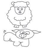 Moutons et porc Images stock