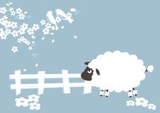 Moutons et seson Images libres de droits