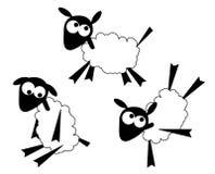 Moutons mignons Image libre de droits