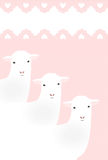 Moutons mignons regardant fixement sur le fond rose Photographie stock libre de droits