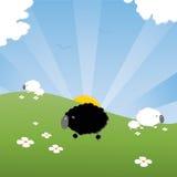 moutons noirs Photographie stock libre de droits