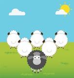 Moutons noirs avec la pensée de différence Image stock
