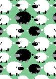 Moutons noirs et blancs. Image libre de droits