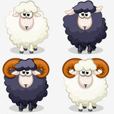 Moutons noirs et blancs de dessin animé Photos libres de droits