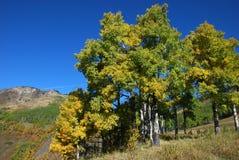 Moutons River Valley en automne Photos stock