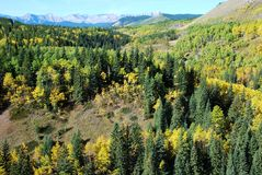 Moutons River Valley en automne Images stock