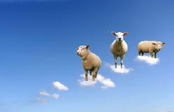 Moutons sur des nuages Images libres de droits