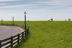 Moutons sur la digue Photographie stock libre de droits
