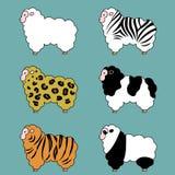 Moutons, variations de fourrure, ensemble Photographie stock libre de droits
