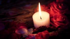 Mouvement de longueur des pétales de rose, de la combustion de bougie et de la rose de fleur Jour de Valentine clips vidéos