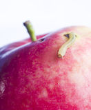 Mouvement de ver de terre sur la pomme rouge photographie stock