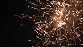Mouvement lent de ciel nocturne coloré de feux d'artifice clips vidéos