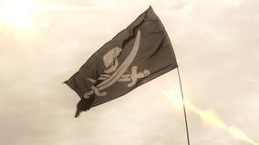 Mouvement lent de drapeau de Jolly Roger banque de vidéos