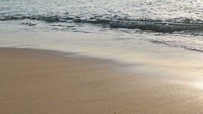 Mouvement lent de mousse de ressac lavant la plage sablonneuse lisse clips vidéos