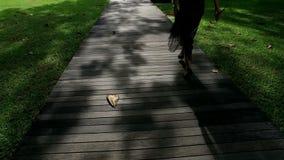 Mouvement lent de vue arrière, jambe de femmes avec la robe de balancement marchant sur la voie en bois avec la lumière et ombre banque de vidéos