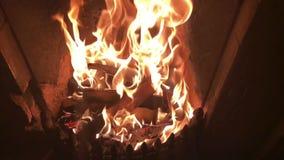 Mouvement lent - flammes dans une cheminée banque de vidéos