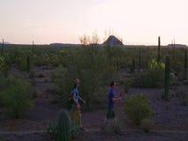 Mouvement lent tiré des randonneurs de désert au coucher du soleil clips vidéos
