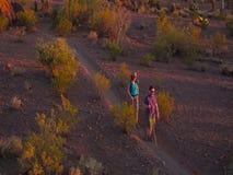 Mouvement lent tiré des randonneurs de désert dans la lumière d'or de fin de l'après-midi banque de vidéos