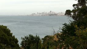 Mouvement rapide San Francisco Seen Through Trees From Marin Across Bay banque de vidéos