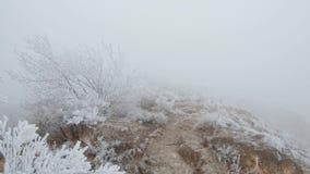 Mouvement sur une pente de montagne pierreuse Les roches et l'herbe sont couvertes de gelée banque de vidéos