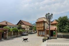 Mouvements de chien de rue de Mtskheta Photo libre de droits
