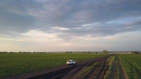 Mouvements de voiture le long de route étroite après les champs verts précis banque de vidéos
