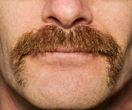 Movember-Schnurrbart stockfotografie