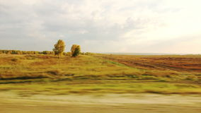 Movement along the agricultural fields (POV) Stock Images