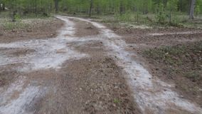 Movement along the sandy road in the tundra. Movement along the sandy road in the Siberian taiga stock footage