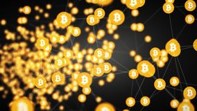 Bitcoin mining, moving connected bitcoin symbols,4k video. Movement bitcoin in the form of circles connected among themselves by white lines similar to the web royalty free illustration