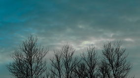 Movement of clouds on a background of trees. Time lapse video. Movement of clouds on a background of trees. Time lapse video 4k stock video