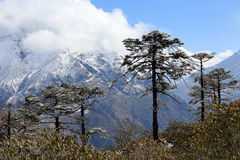 Movement of the clouds on the mountains Kongde Ri, Himalayas, Ne Stock Image