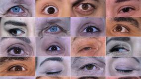Movement of Different Types of Eye stock footage