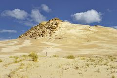Movement dunes - Leba, Poland, National Unesco Park. Royalty Free Stock Images