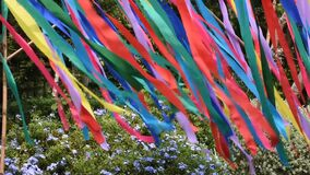 Movement and moving of colorful rainbow paper plate sheet at outdoor in garden