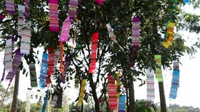 Movement of Prayer flags or Tung Flag stock footage