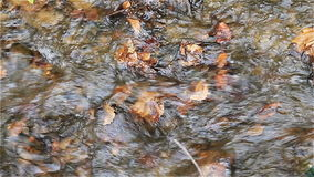Movement of water in a mountain stream close up stock video