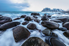 Movement of water on the shores of cold Norwegian Sea at evening time. Lofoten islands. Beautiful Norway landscape. Stock Photos