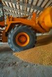 Mover loadding corns of wheat Stock Photo
