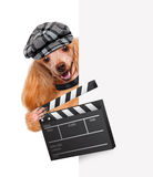 Movie clapper board director dog. Movie clapper board director dog over white banners Royalty Free Stock Image