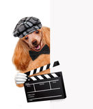 Movie clapper board director dog. Royalty Free Stock Photo