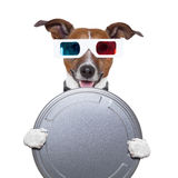 Movie film canister 3d glasses dog. Watching Stock Photos