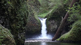 Movie of Gushing Water from Punch Bowl Falls on Eagle Creek in the Columbia River Gorge National Scenic Area, Oregon 1080p stock video footage