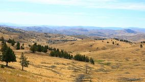 Movie of high desert terrain and vegetation in Antelope Central Oregon USA stock video