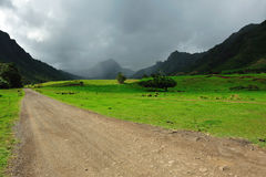 Movie scenes from kahana valley Royalty Free Stock Images